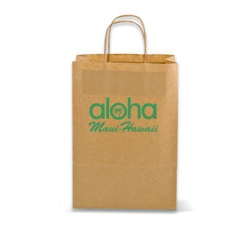 Twisted Paper Handle  Carrier Bag - Recycled Paper