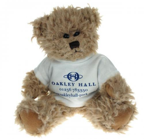 20cm teddy bear with logo -t-shirt - Windsor
