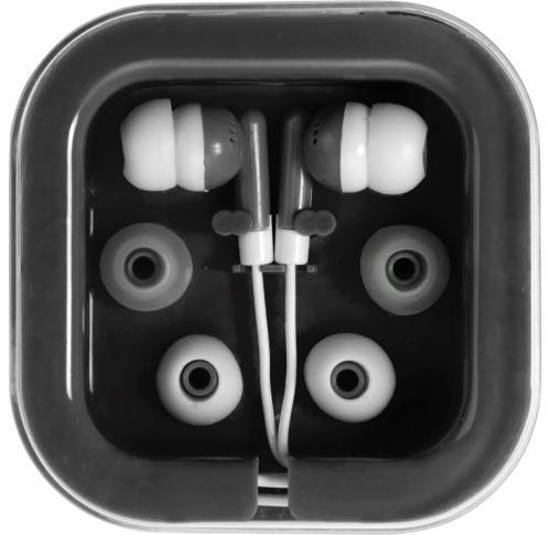 Pair Of Earphones in Plastic Case